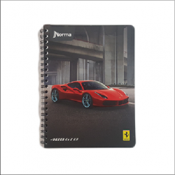 Professional Notebook